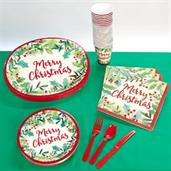 Merry Holly Christmas Party Pack (24)