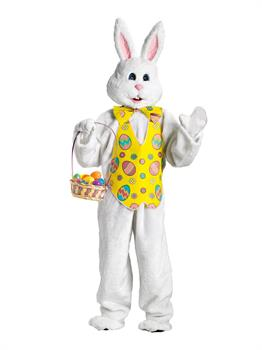 Bunny Mascot Plus Costume