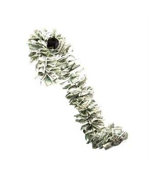 Money Boa Perfect Accessory For 20s Flapper