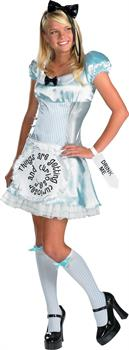Alice in Wonderland Tween/Teen Junior Costume