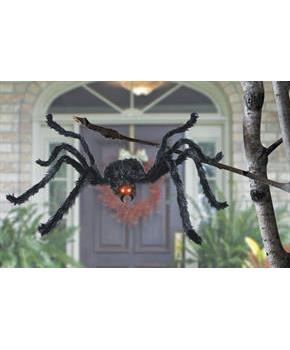 Animated Black Spider