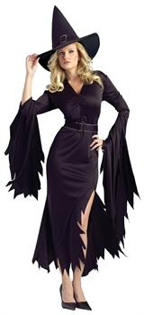Women's Gothic Witch Adult Costume