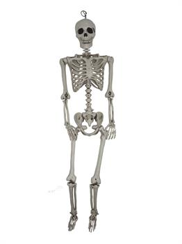 5Ft Hanging Skeleton Prop