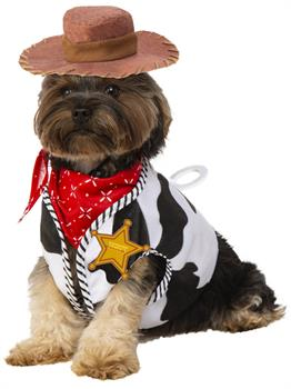 Woody Pet Costume