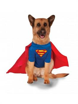 Big Dogs' Superman Pet Costume