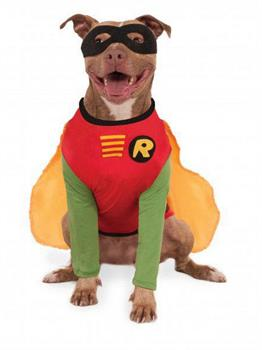 Big Dogs Robin Pet Costume