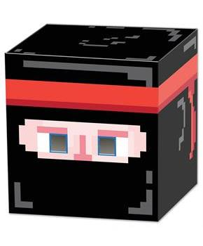 Boys Ninja 8-Bit Box Head