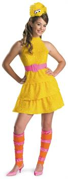 Sesame Street Big Bird Costume Teen