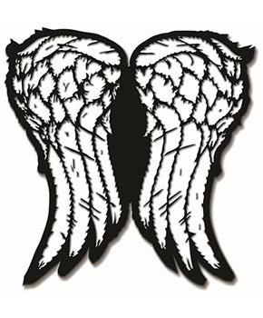 The Walking Dead Daryl Wings Collectible Pin, NYCC '17 Exclusive