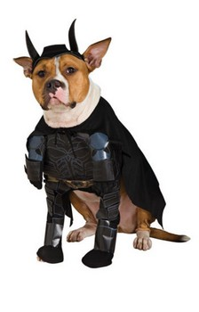 Batman Pet Dog Costume - Medium
