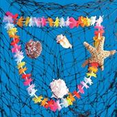 6' Authentic Luau Fish Net Set
