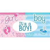 Gender Reveal Lotto Tickets - Boy