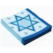 Chanukah Lunch Napkin (16)