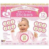 It's A Girl Baby's 1st Year Stickers