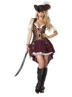 Sexy Swashbuckler Adult Plus Costume