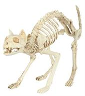 Skeleton Cat with Crazy look and Bendable Tail Bones