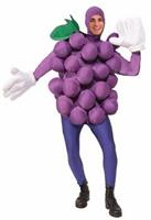 Purple Grapes Adult Costume One-Size