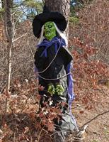 Tree Hugger Witch