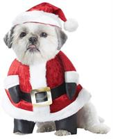 Santa Paws Pet Costume
