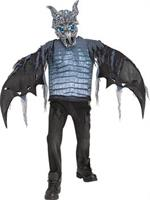 Ice Dragon Boys Light Up Costume