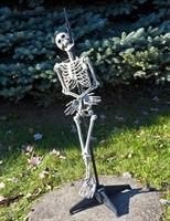 Skewered Skeleton Standing Prop