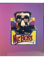 Mr Boss Eyeglasses