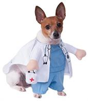 Walking Vet Pet Costume