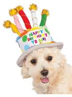 Birthday Cake Hat Pet Costume