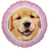 Dog Colorful Party Balloons, Numbered Balloons and Balloon Bouquets