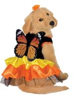Monarch Butterfly Pet Costume
