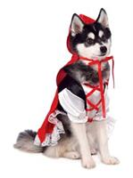 Red Riding Hood Pet Costume
