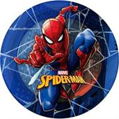 "Spider-Man 9"" Lunch Plate (12)"