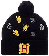Harry Potter Hogwarts Houses Embroidered Logos Pom Beanie