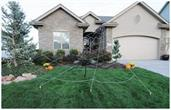Mega Spider Web Outdoor Halloween Decoration