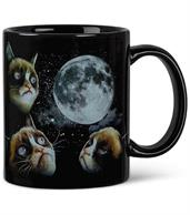 Grumpy Cat Party Supplies & Decorations