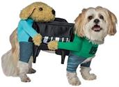 Dogs Carrying Piano Pet Costume, XXL-XXXL