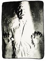 "Star Wars Han Solo Carbonite 46""x60"" Fleece Throw"